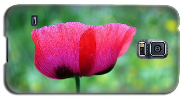 Flower Of Remembrance Galaxy S5 Case