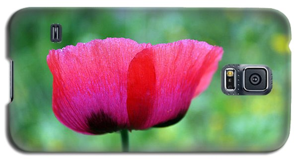 Galaxy S5 Case featuring the photograph Flower Of Remembrance by Martina  Rathgens