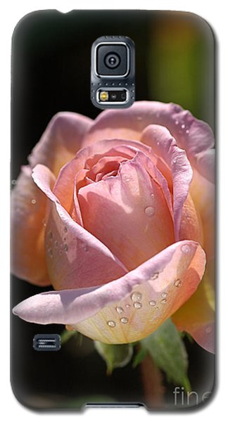 Flower-pink And Yellow Rose-bud Galaxy S5 Case