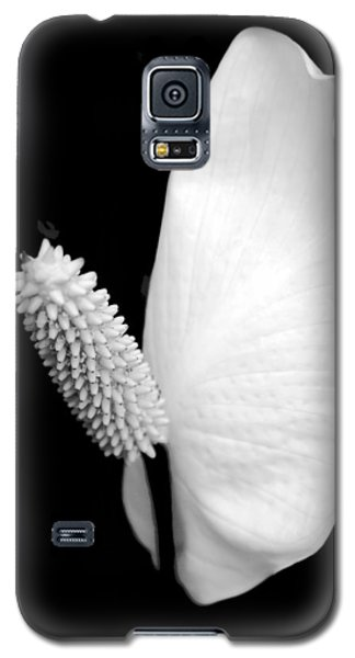 Lily Galaxy S5 Case - Flower Power Peace Lily by Tom Mc Nemar