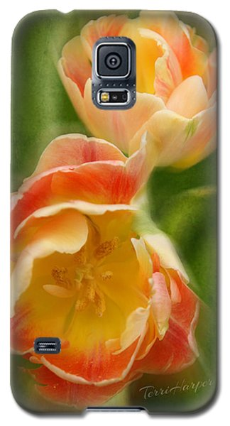 Galaxy S5 Case featuring the photograph Flower Power Revisited by Terri Harper