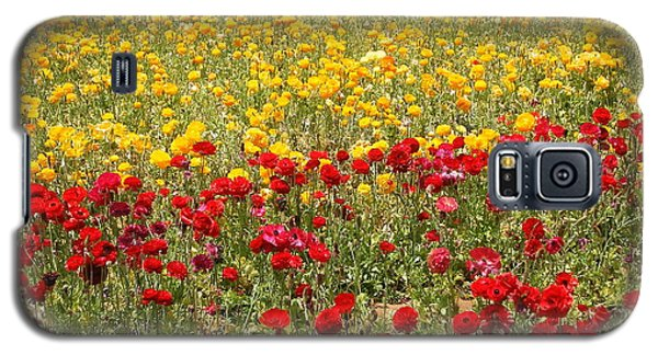 Flower Rainbow Galaxy S5 Case