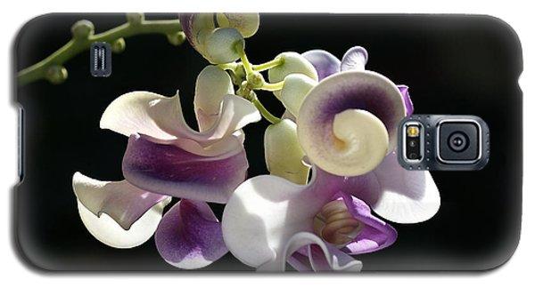 Flower-snail Flower Galaxy S5 Case