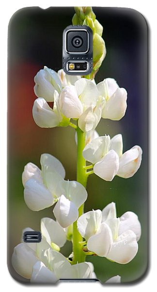 Flower Galaxy S5 Case by Tiffany Erdman