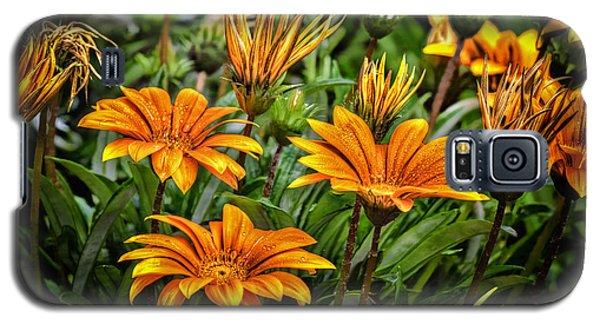 Flower Town Galaxy S5 Case