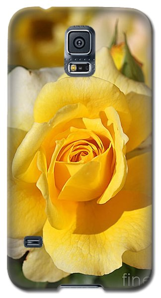 Flower-yellow Rose-delight Galaxy S5 Case