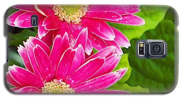Flower1 Galaxy S5 Case