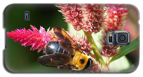 Galaxy S5 Case featuring the photograph Flowering Bumble Bee by B Wayne Mullins