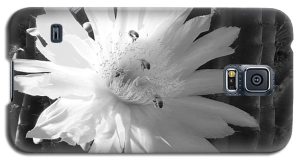 Flowering Cactus 5 Bw Galaxy S5 Case