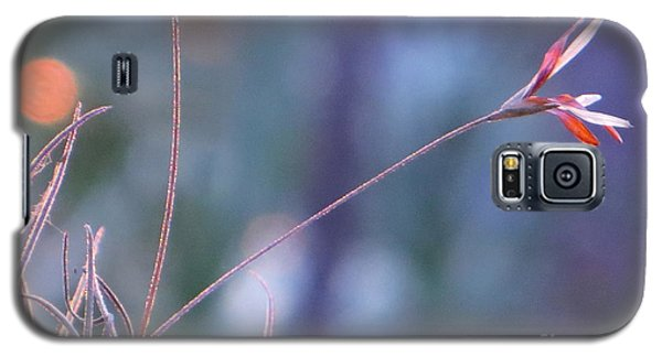Galaxy S5 Case featuring the photograph Flowering Moss by Joy Hardee