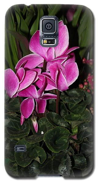 Flowering Plant Galaxy S5 Case