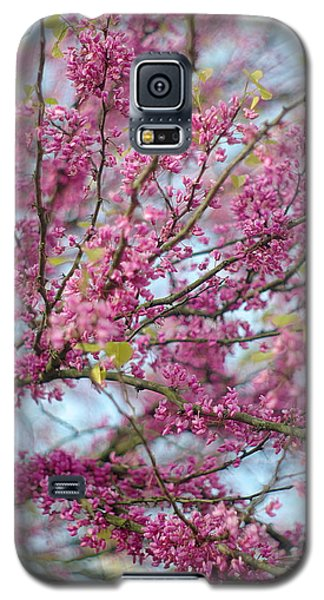 Galaxy S5 Case featuring the photograph Flowering Redbud Tree by Suzanne Powers