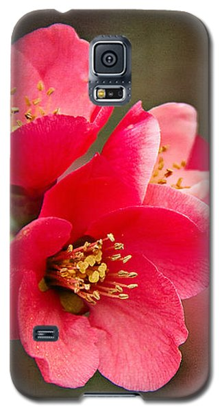 Flowering Quince Galaxy S5 Case by Lana Trussell