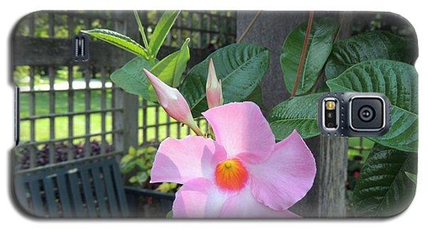Flowering Vine Galaxy S5 Case by Teresa Schomig