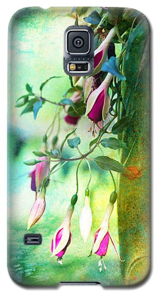 Flowers Bloom And Flowers Wither Galaxy S5 Case by John Rivera