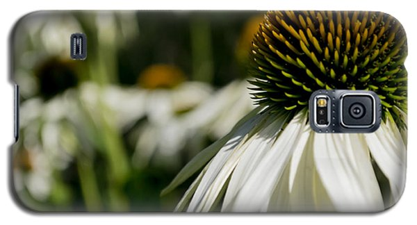 Flowers - Echinacea White Swan Galaxy S5 Case