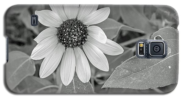 Galaxy S5 Case featuring the photograph Flowers by Elaine Malott