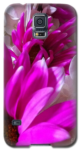Galaxy S5 Case featuring the photograph Flowers In A Row by Gayle Price Thomas