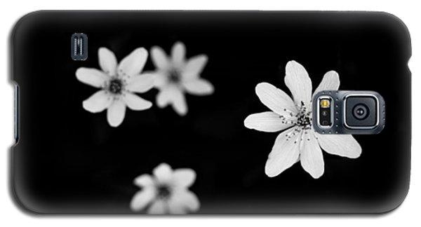 Flowers In Black Galaxy S5 Case by Shane Holsclaw