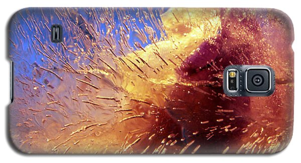 Galaxy S5 Case featuring the photograph Flowers In Ice by Randi Grace Nilsberg