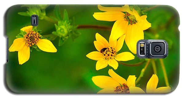 Flowers In Red Fence Galaxy S5 Case by Darryl Dalton