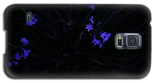 Blue Galaxy S5 Case - Flowers Like Stars by CML Brown