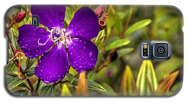 Flowers Love Water Galaxy S5 Case