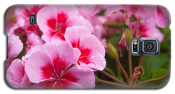 Flowers On A Rainy Sunday Afternoon Galaxy S5 Case