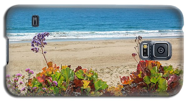 Galaxy S5 Case featuring the photograph Flowers On Pismo Beach by Debra Thompson