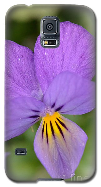 Galaxy S5 Case featuring the photograph Flowers That Smile by Kerri Farley