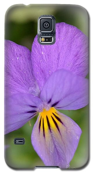 Flowers That Smile Galaxy S5 Case