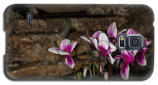 Flowers With Waterfall Backdrop Galaxy S5 Case