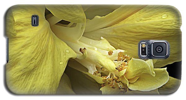 Flowing Petals Of The Chinese Hibiscus Galaxy S5 Case