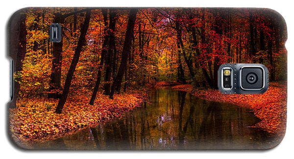 Flowing Through The Colors Of Fall Galaxy S5 Case