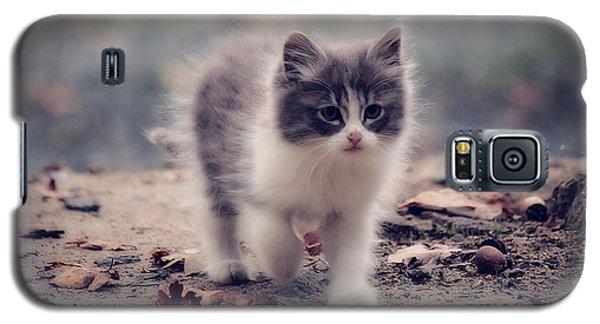 Fluffy Cuteness Galaxy S5 Case