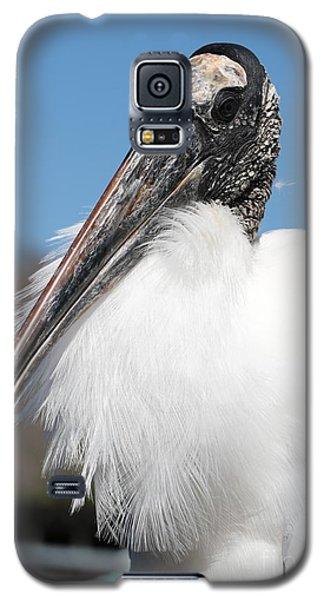 Fluffy Wood Stork Galaxy S5 Case by Carol Groenen