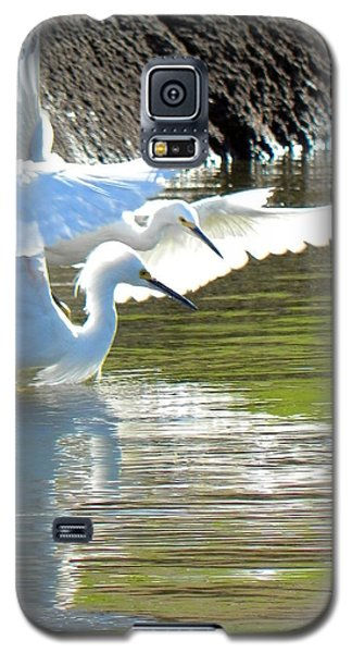 Galaxy S5 Case featuring the photograph Flurry by Deb Halloran