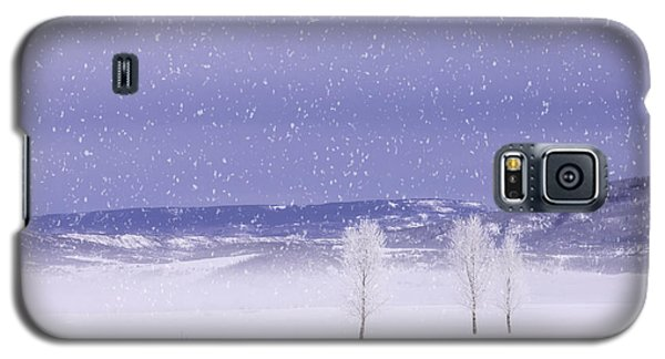 Galaxy S5 Case featuring the photograph Flurry Trio by Kristal Kraft