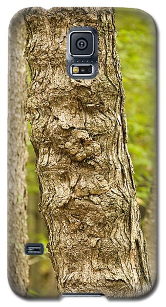 Fluted Tree Galaxy S5 Case