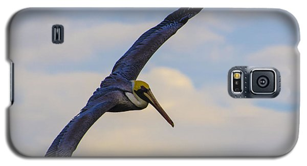 Fly Away Galaxy S5 Case by Judy Wolinsky