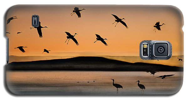 Fly-in At Sunset Galaxy S5 Case