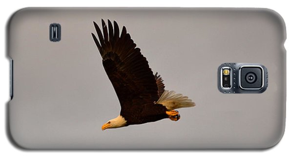 Patriotic Galaxy S5 Case - Fly Like An Eagle by Doug Grey