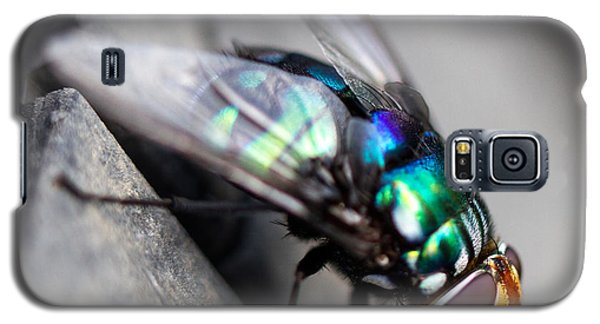 Fly On Tyre Galaxy S5 Case