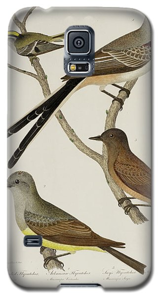 Flycatcher And Wren Galaxy S5 Case by British Library