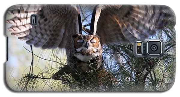 Flying Blind - Great Horned Owl Galaxy S5 Case