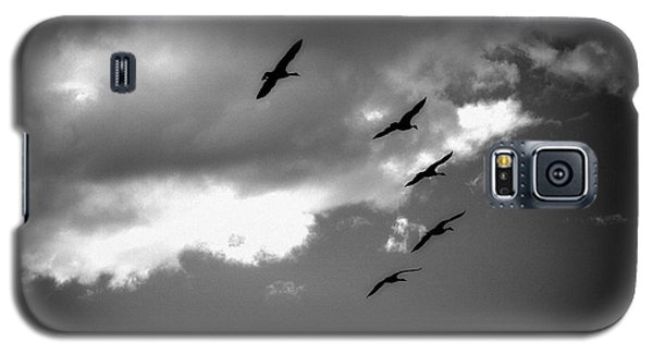 Galaxy S5 Case featuring the photograph Flying Canada Geese by Michael Dohnalek