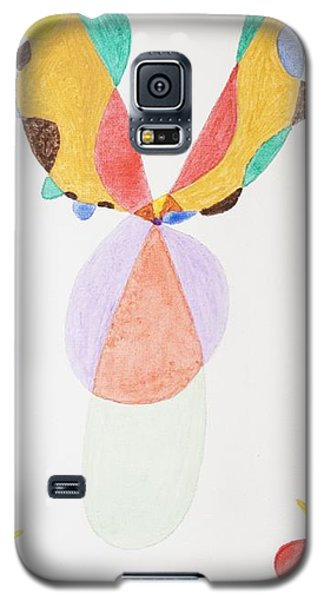 Galaxy S5 Case featuring the painting Flying Colors by Stormm Bradshaw
