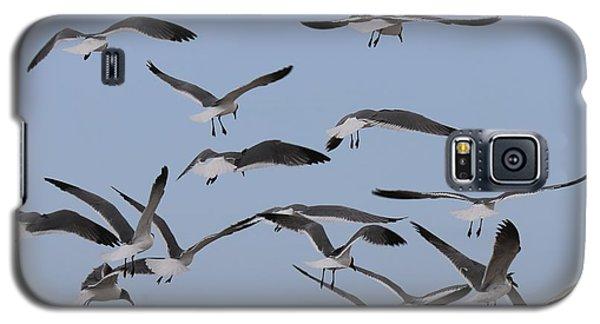 Flying Gulls  Galaxy S5 Case
