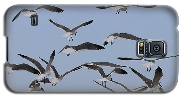 Flying Gulls  Galaxy S5 Case