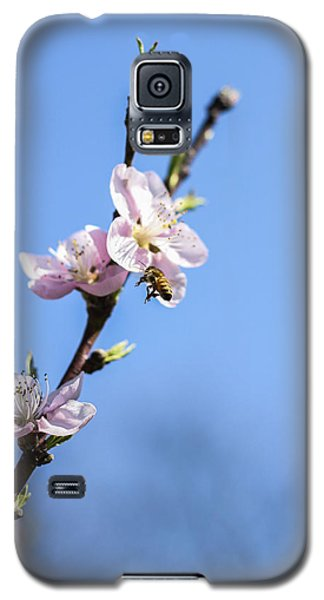 Galaxy S5 Case featuring the photograph Flying High by Amber Kresge